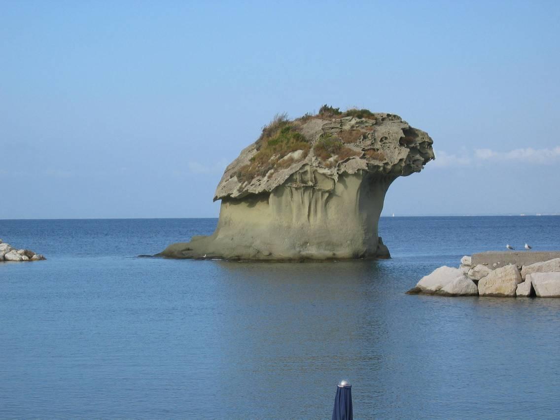 il fungo di ischia situato nel comune di lacco ameno